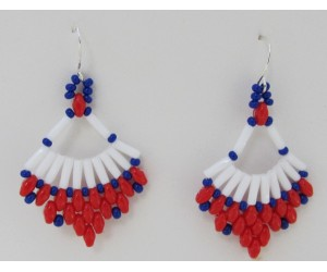 "BBTB4114         ""Patriotic Fan Earrings"""